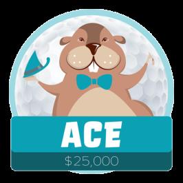 Presenting Ace Sponsor