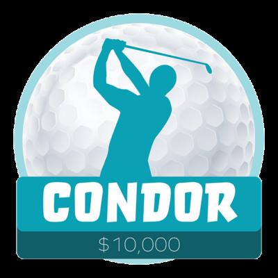 Condor 600